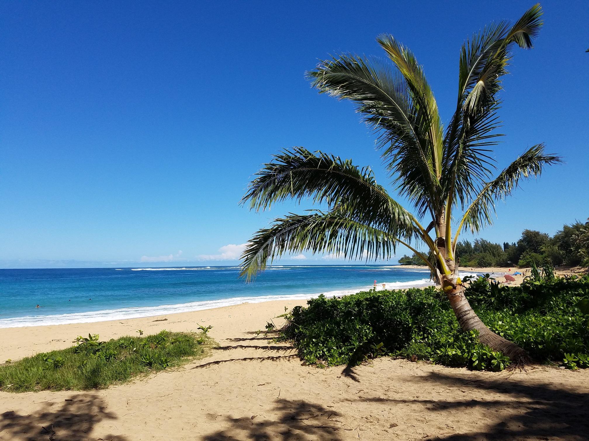 Maniniholo beach